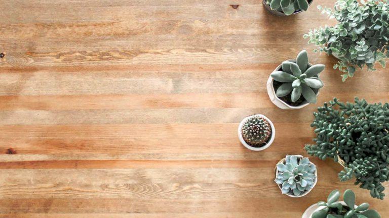 Wood Flooring Guide LR5 9